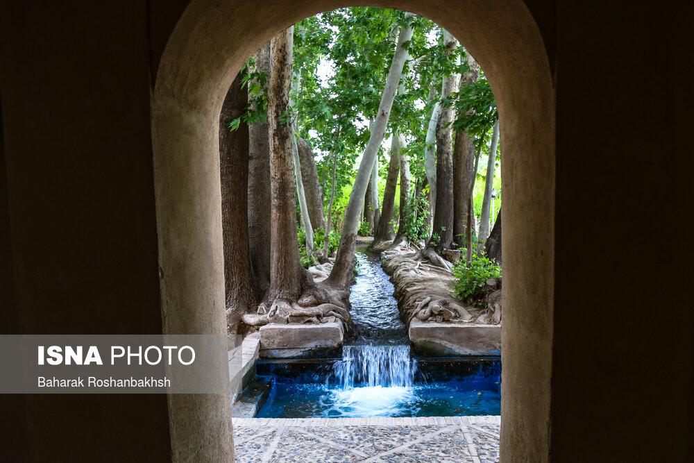 باغی بهشتی در وسط کویر یزد! + عکس