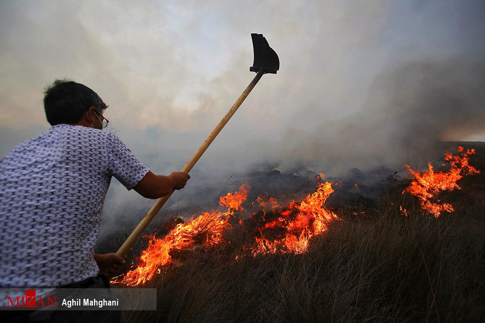 تلاش برای خاموش کردن آتش در جزیره «آشوراده» + عکس