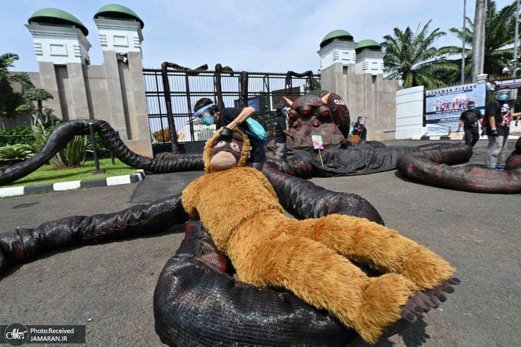 اعتراض یک فعال محیط زیستی در جاکارتا + عکس