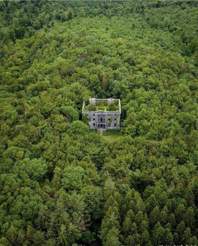 عمارتی متروکه در جنگل های ایرلند + عکس