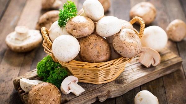 قارچی که مصرفش از اسکیزوفرنی و افسردگی جلوگیری می کند!