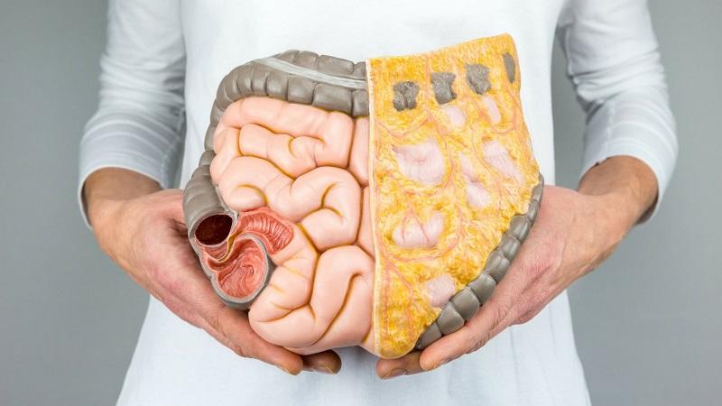 مغز دوم انسان در روده است!/ نقش سیستم عصبی رودهای در دستگاه گوارش