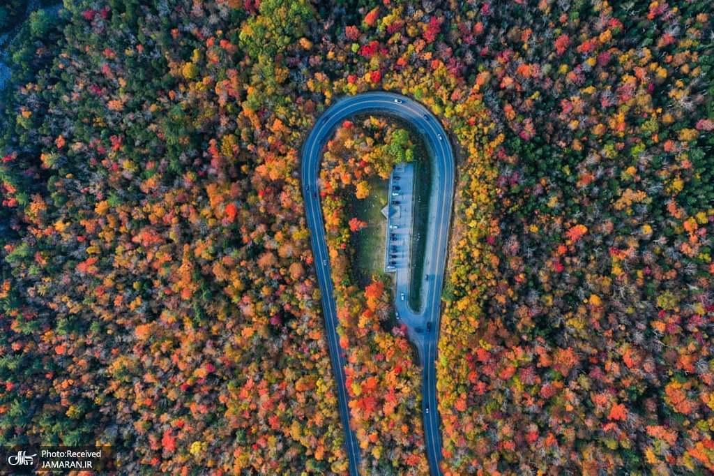 نمای هوایی از جاده زیبای پاییزی در ایالات متحده + عکس