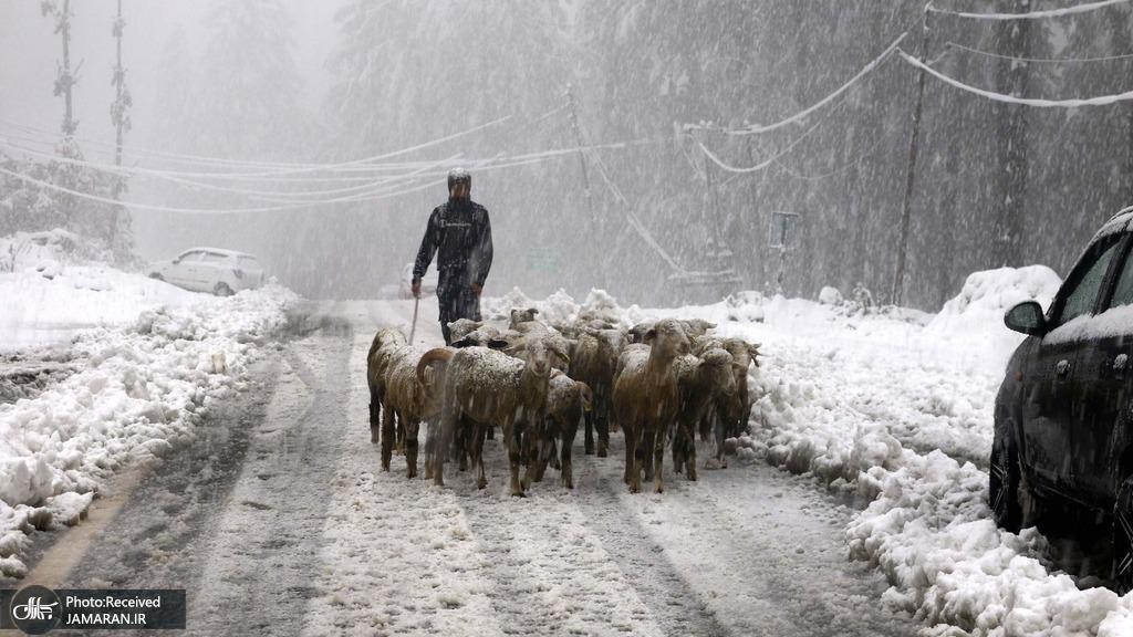 برف و سرمای بی سابقه در کشمیر + عکس