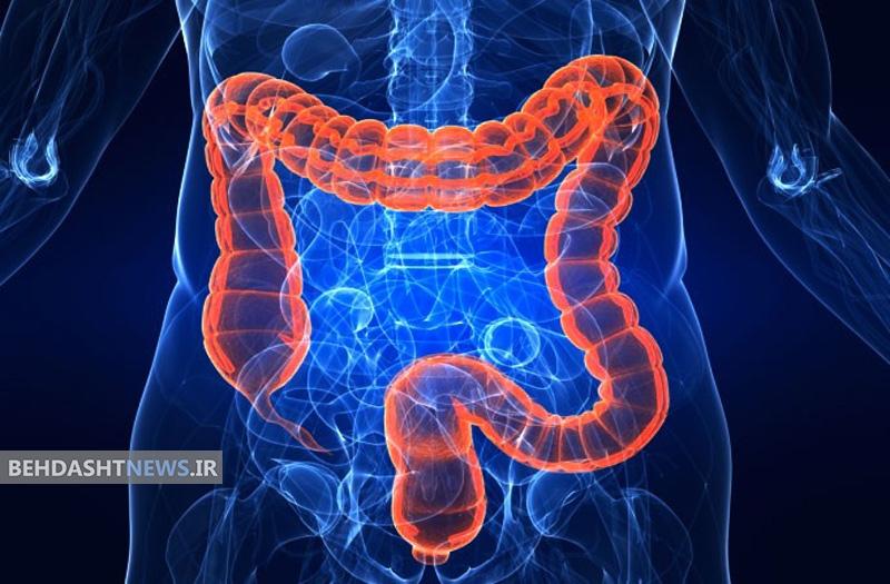 وجود باکتری تهاجمی در روده و  ارتباط آن با دیابت