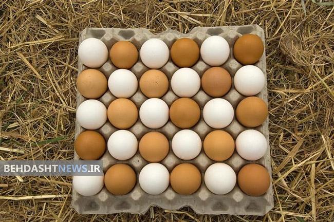 تخم مرغ قهوه ای یا سفید؟ کدام بهتر است؟