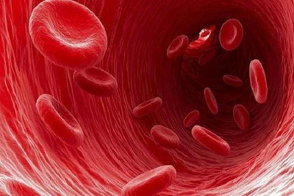 چه افرادی در معرض ابتلا به کم خونی هستند+دستور العمل پیشگیری