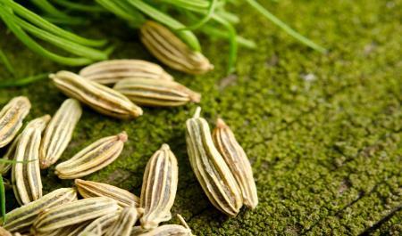 برای طراوت و رفع چروک پوست این عرق گیاهی را میل کنید