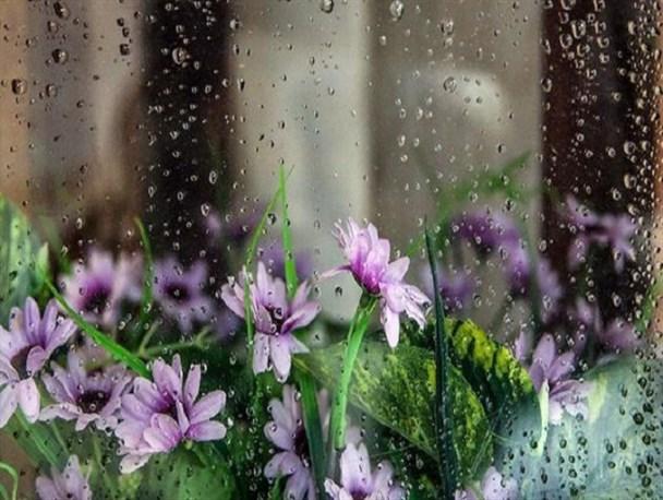 بارش باران در 9 استان