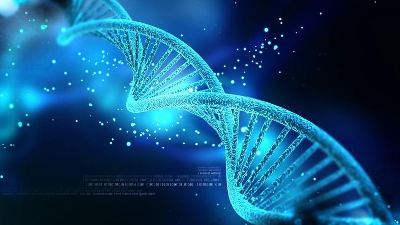ژن هایی که باعث معلولیت فکری می شود!