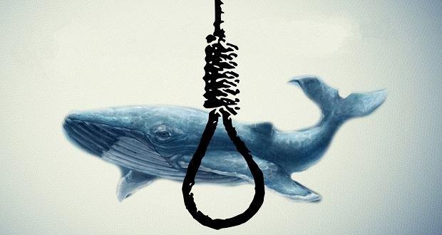 بازی نهنگ آبی شروعی برای پایان زندگی است