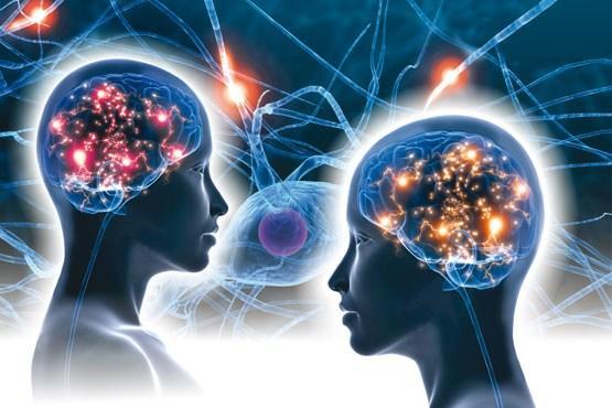 برگزاری نخستین سمپوزیوم تازههای نقشهبرداری مغز ایران