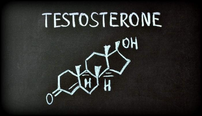 سطح پایین تستوسترون چه مشکلاتی را برای بدن ایجاد میکند؟