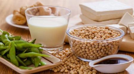 گیاهانی سرشار از پروتئین