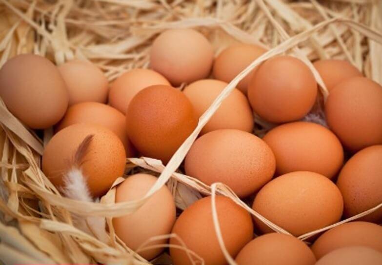درمان سرطان با تخممرغ!