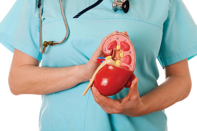 آشنایی با رایجترین علل، علایم، عوارض و علاج نارسایی کلیه