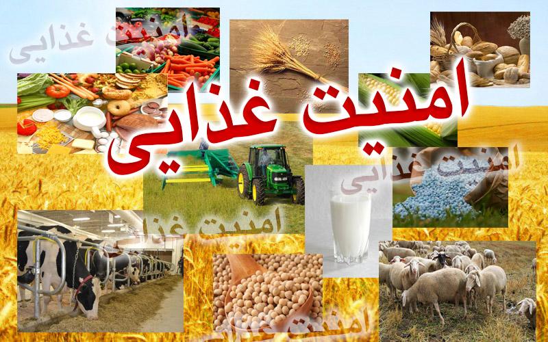 نیاز به عزم جدی در ایجاد امنیت غذایی پایدار