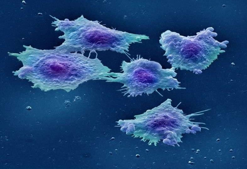 ابداع روشی برای تصویربرداری از پروتئینها در حالت طبیعی
