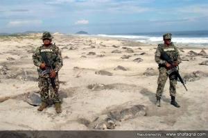 تصویری عجیب از مکزیک:حفاظت سربازان کاملا مسلح از تخم لاکپشت ها