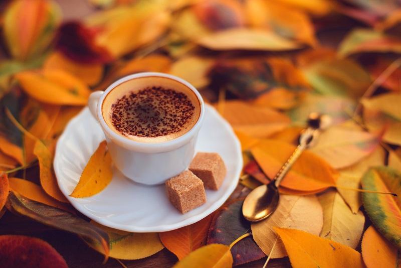 طرز تهیه ۱۰ نوشیدنی پاییزی+تصاویر