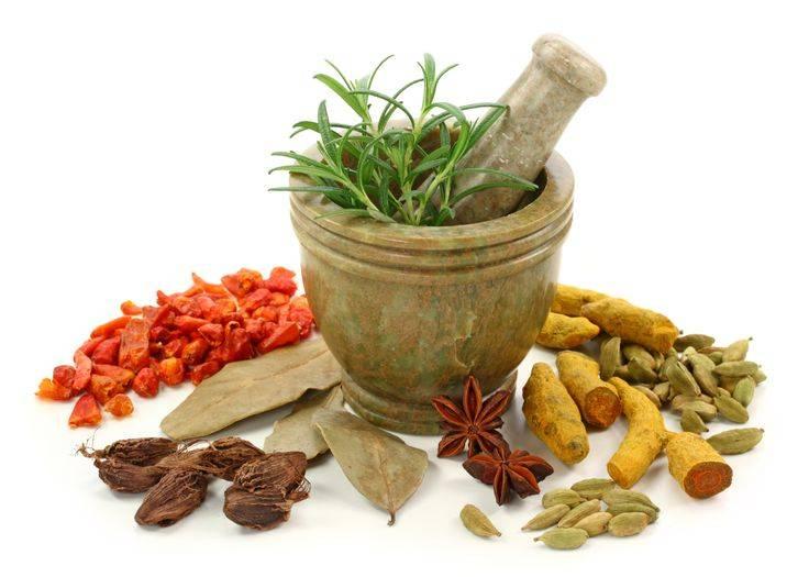 طب سنتی ایران، قابلیت صادرات، ارزآوری و درآمدزایی دارد