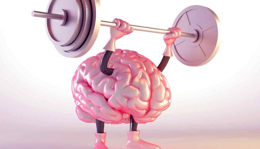 ورزش حجم مغز را افزایش میدهد