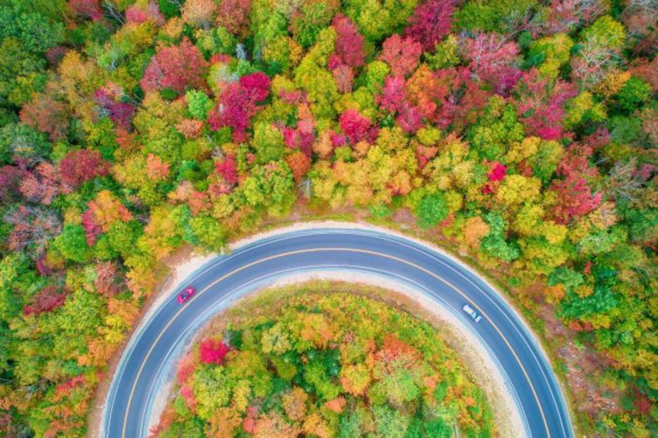 تصاویر حیرت انگیز از پادشاه فصل ها  «پاییز»