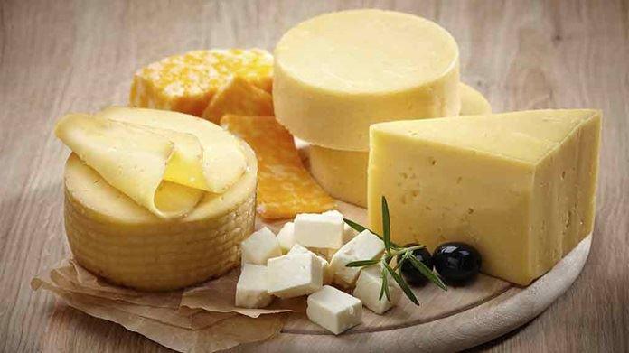 پنیر حافظ سلامت قلب یا خطری برای بیماری های قلبی؟!