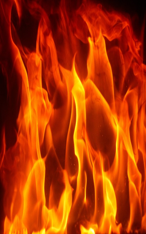 آتش سوزی در جنگل گلستان