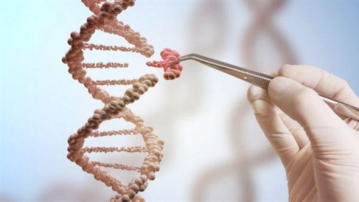درمان دیابت و دیستروفی عضلانی  با شیوه جدید مهندسی ژنتیک