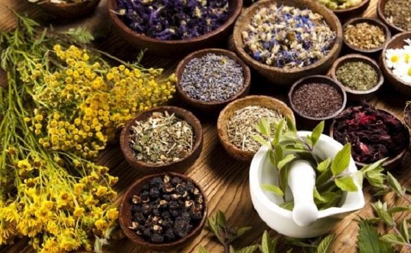 90 گیاه دارویی و ادویه بی نظیر برای سلامتی