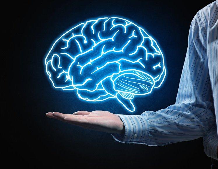 کارهایی که شکل مغزتان را تغییر میدهد