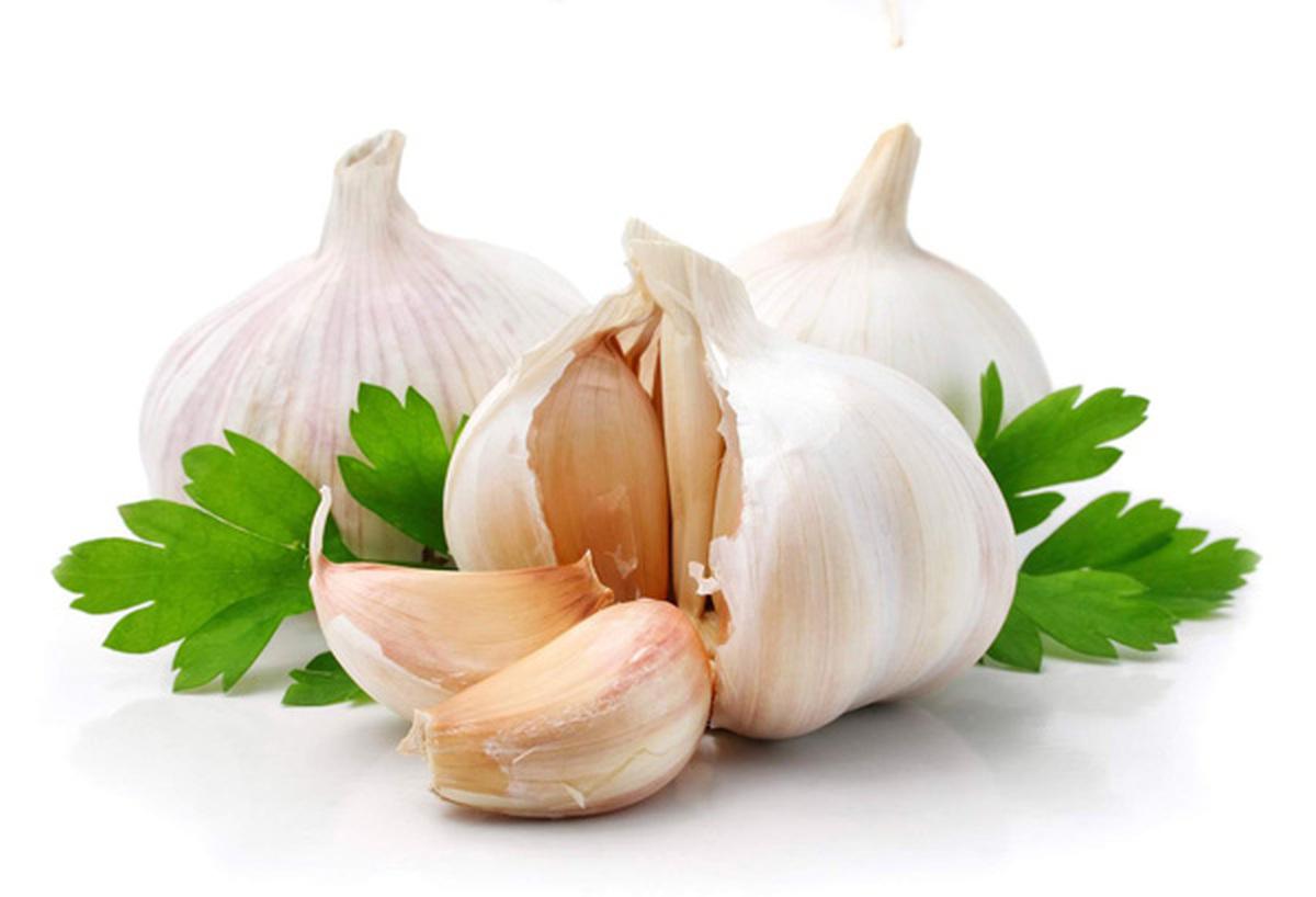 ۹ ماده غذایی سفید رنگ را حتما به رژیم تان اضافه کنید
