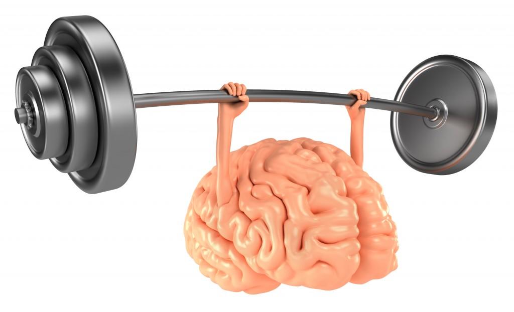 ۱۰ گزینه غذایی فوق العاده برای افزایش تمرکز و قدرت حافظه