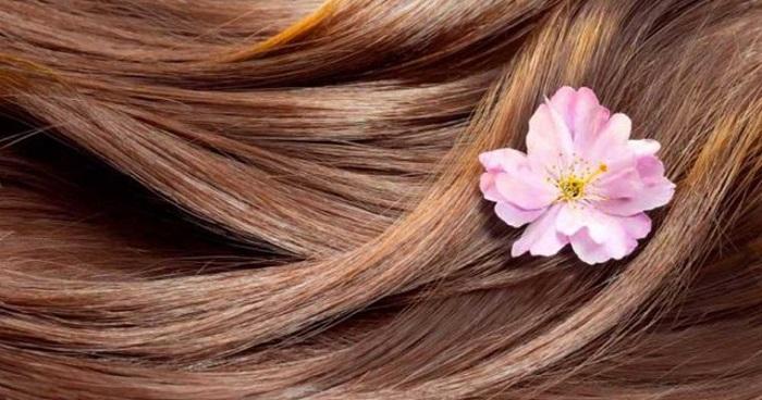 10 ثانیه ای تشخیص دهید موهایتان سالم هست یا نه