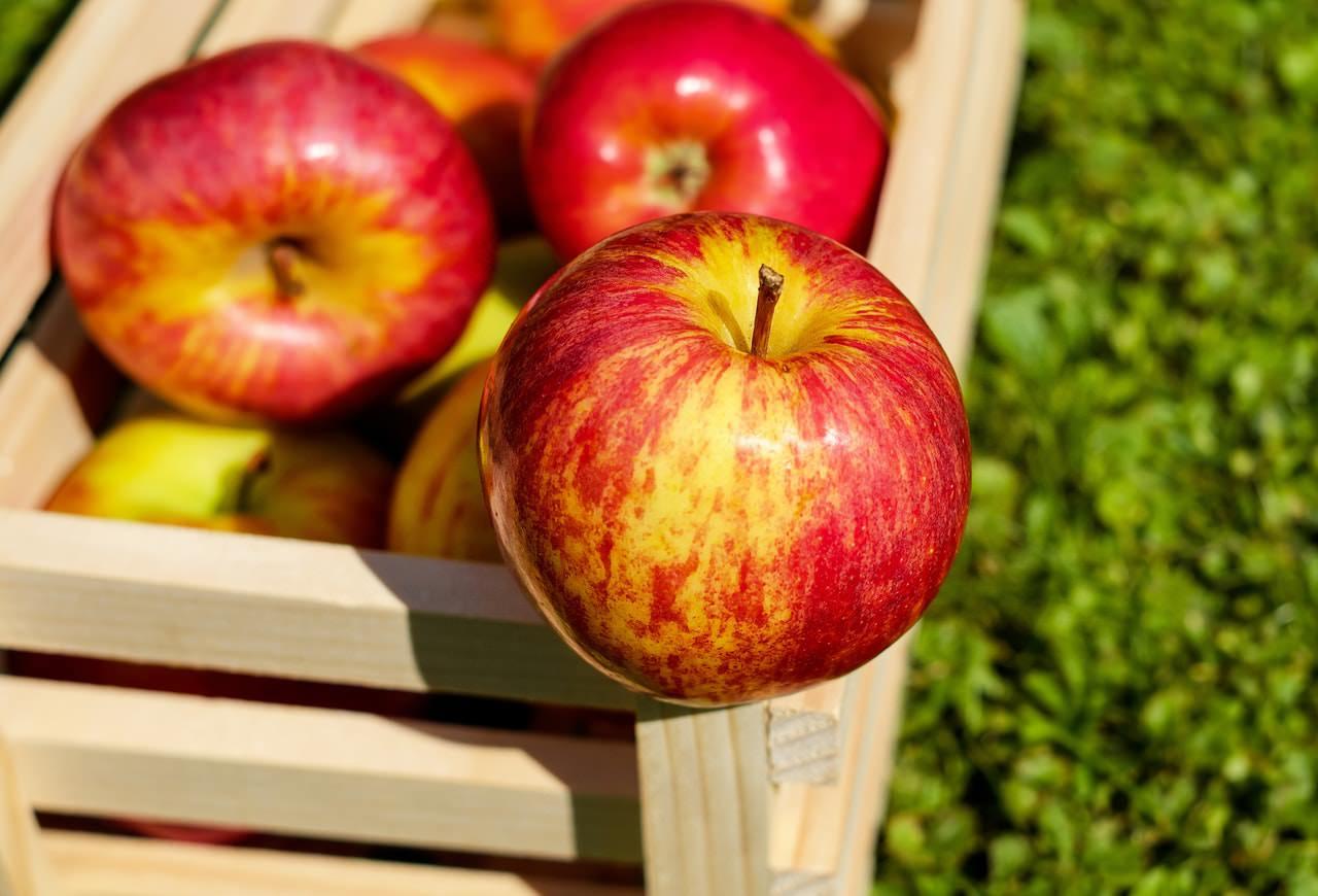 اینفوگرافیک : سیب بخور، سالم بمان