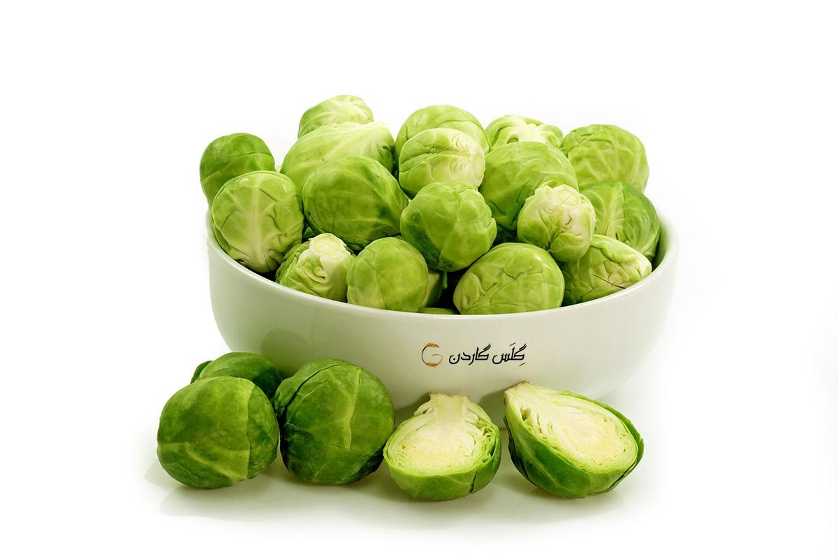 ۱۰ نوع از سالم ترین سبزیجات دفع کننده بیماری ها را به رژیم غذایی بیفزایید