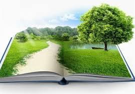 نامه محیطزیستیها به وزیر آموزش و پرورش