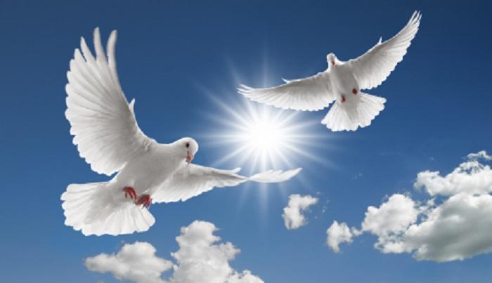 روز قیامت روسفید و فروزان باشید
