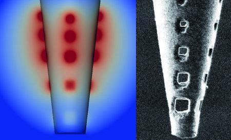 شیوه جدید برای شبیه سازی مدارهای الکتریکی مغز