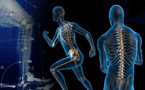 ساخت دستگاه تقویتکننده عضلات داخلی ران در دانشگاه علامه