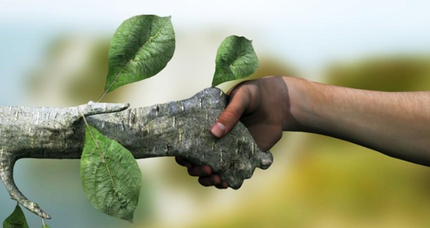 اولین استارتاپ زیستمحیطی برگزار میشود
