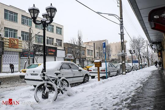 بارش زیبای برف در اردبیل + عکس
