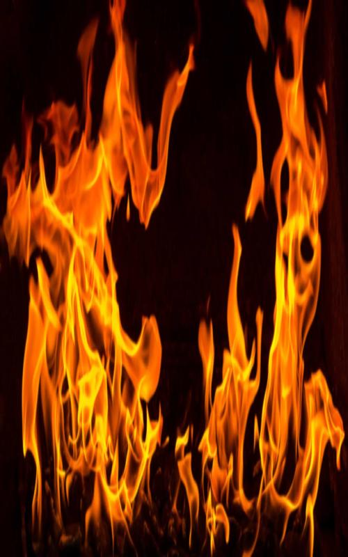 آتش سوزی درجنگل های نکا