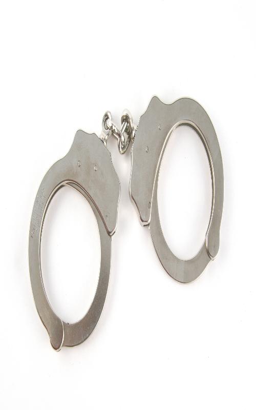 شرور سابقه دار دستگیر شد