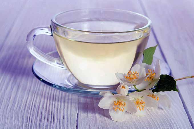 این چای را بنوشید تا لاغر شوید!