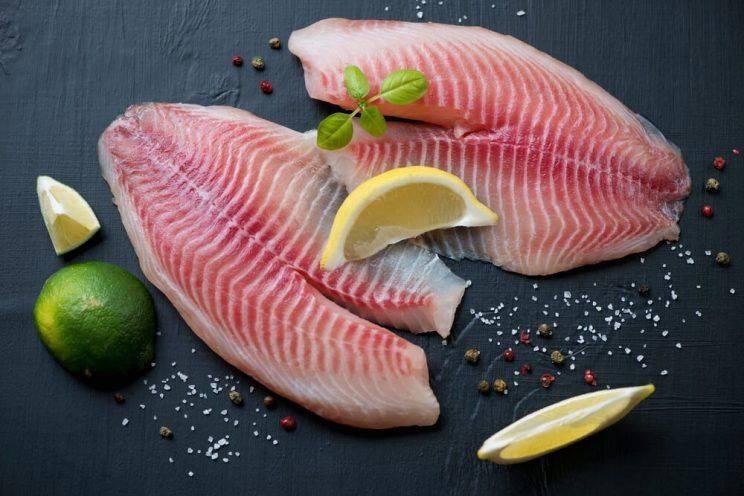 علت ممنوعیت ماهی تیلا پیا