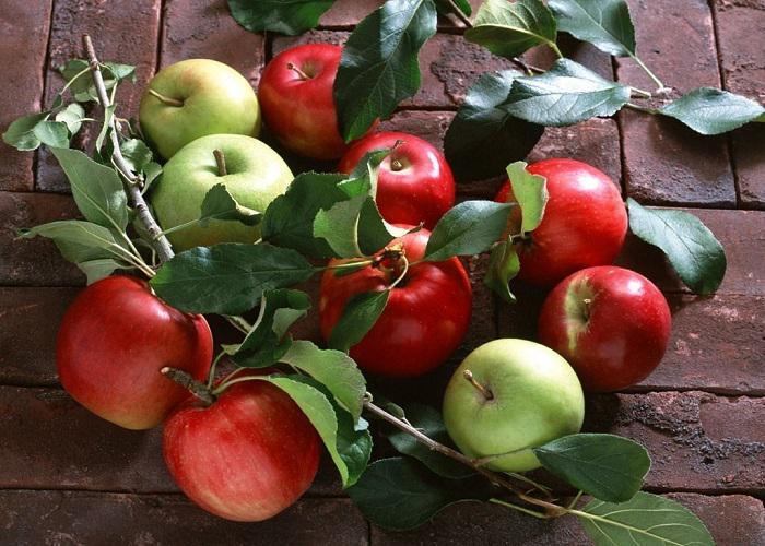 5 ماده غذایی که دهانتان را خوشبو و نفس تان را تازه می کند