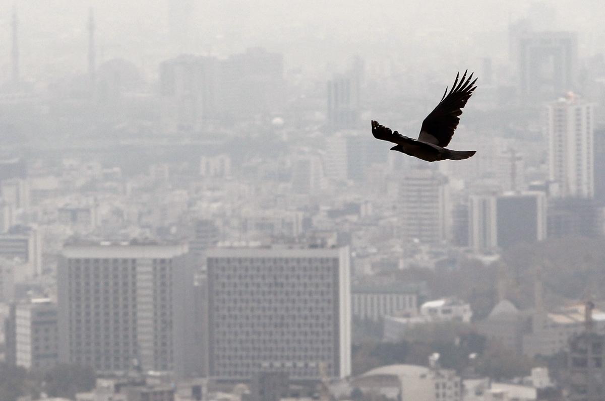 هوای پایتخت برای گروههای حساس ناسالم است