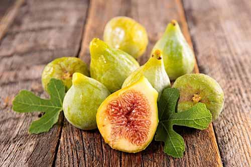 درمان یبوست با میوه مقدس